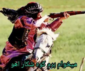 دانلود آهنگ میخوام برم کوه شکار آهو حسین عامری