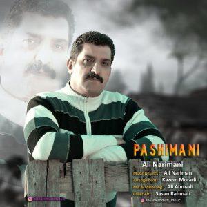 Ali-Narimani-Pashimani